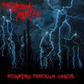 Roaming Through Chaos
