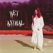 Wet Animal