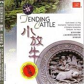 Tending Cattle