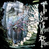 The Silver Wizard Project