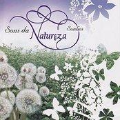 Nature Sounds - Dreams