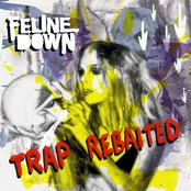 Trap Rebaited