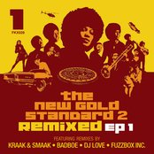 The New Gold Standard 2 Remixed - EP 1
