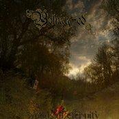 Woods of Eternity
