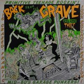 Back From the Grave, Volume 3