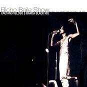Bicho Baile Show