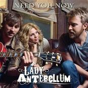 Need You Now (Single)
