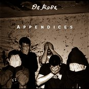 Appendices 2008