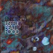 Useful Beat Food