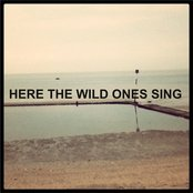 HERE THE WILD ONES SING