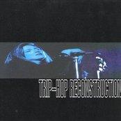 Trip-Hop Reconstruction