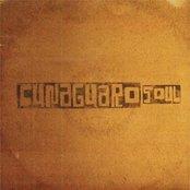 Cunaguaro Soul