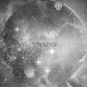 Wild Pendulum