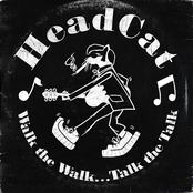 album Walk the Walk...Talk the Talk by The Head Cat