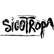 Sicotropa