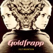 Felt Mountain (bonus disc)