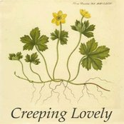 Creeping Lovely - EP