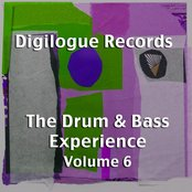 The Drum & Bass Experience Volume 6