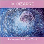Ambient Collection Vol. 5
