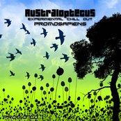 Promosapiens