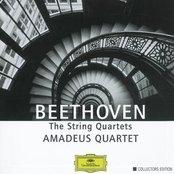 The String Quartets (Amadeus Quartet)