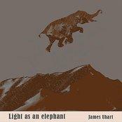 Light As An Elephant