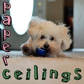 Paper Ceilings