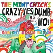 Enright House Remixes The Mint Chicks