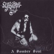A Sombre Soul