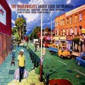 Under Your Sky Remixes
