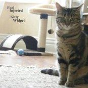Fuel Injected Kitty Widget