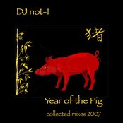 Year of the Pig (collected mixes 2007)