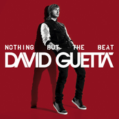 album Nothing but the Beat by David Guetta & Afrojack