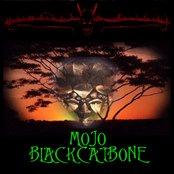 Mojo Black Cat Bone