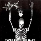 Increasing the Hate