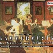 Chamber Music (Romantic 19Th Century) - Schubert, F. / Weber, C.M. Von / Spohr, L. / Brahms, J. / Grieg, E. / Schumann, R. / Boccherini, L.