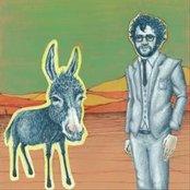 Last Donkey Show