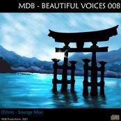 Beautiful Voices 008 (Ethnic-Lounge mix)