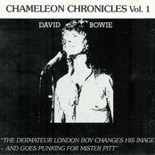 Chameleon Chronicles, Volume 1