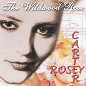 The Wildwood Rose