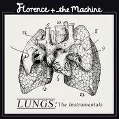 Lungs & Instrumentals