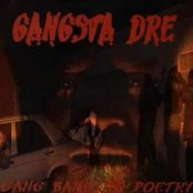 Gang Bangin Poetry: The Sequel
