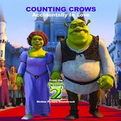 Accidentally In Love (From Shrek 2 S/T)