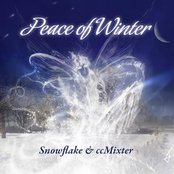Peace of Winter