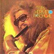 A Música Livre de Hermeto Pascoal