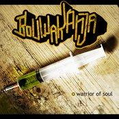 Warrior Of Soul