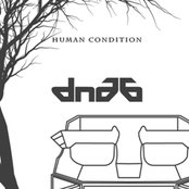 DNA6-Human Condition