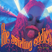 album Zoom Daddy by The Swirling Eddies