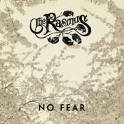 No Fear CDS