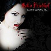 Back to Schwarz Vol. 1